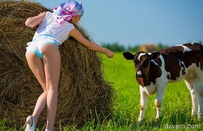 Девушка в трусивах и теленок на поляне