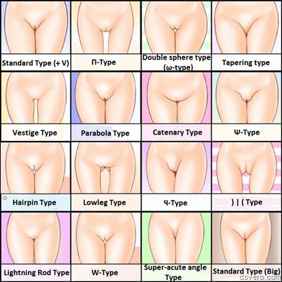 Классификация женских писек