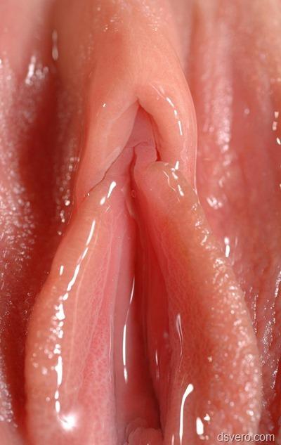 Порно фото писек